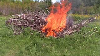 Brush fires. Burning brush on the farm.