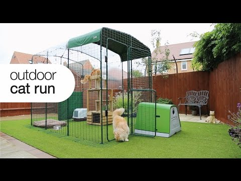 Cat Enclosure - Outdoor Cat Run | Omlet