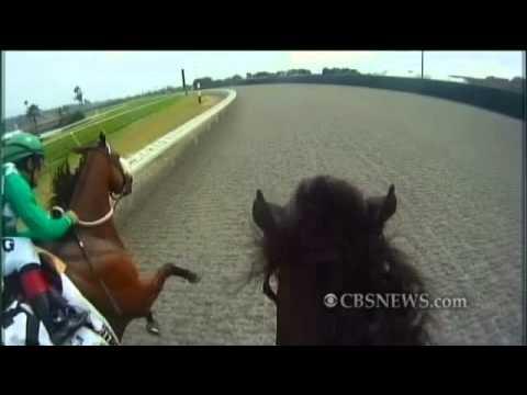 Jockey Cam: A Rider's Eye View of a Horse Race