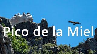 ⛰️ Senderismo en MADRID 📍 Sierra de la Cabrera y Pico de la Miel