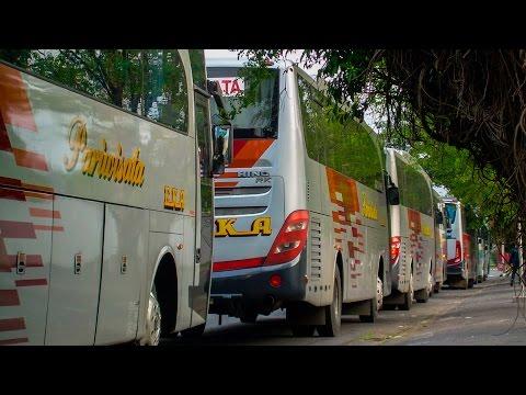 Konvoi 7 Unit Bus Eka Pariwisata