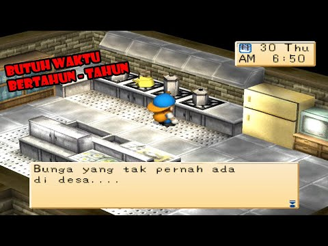 Cara Download Harvest Moon Hero of Leaf Valley Bahasa Indonesia di Android.