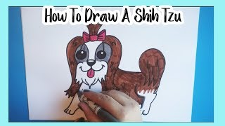How To Draw A Shih Tzu!