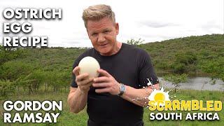 Gordon Ramsay Makes OSTRICH Scrambled Eggs In South Africa | Scrambled