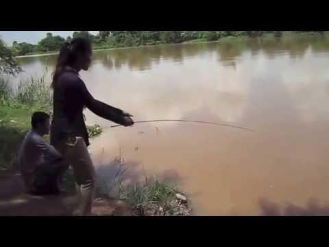 Fishing Cambodia today at mekong river | Fresh Water fishing at Koh Okhna Tey