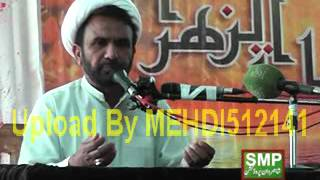 Maulana Manzoor Hussain Jawadi (16 March 2016-Pakki Shah Mardan-Mianwali)