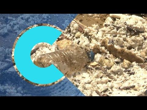 Massive palm oil spill covers Hong Kong beaches