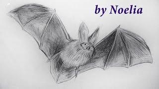 drawing a bat / рисуем летучую мышь