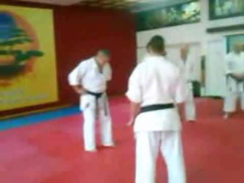 Karate veterani-četvrti trening vodio sensei Vladimir Popović 7 DAN -Uechi-ryu -09.02.2014  god.