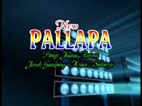 anak haram  Voc. Nadin Santoso New Pallapa