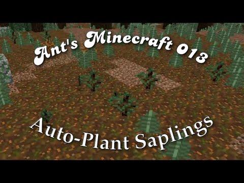 Ants 013 Auto-Plant Saplings