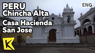 【K】Peru Travel-Chincha Alta[페루…