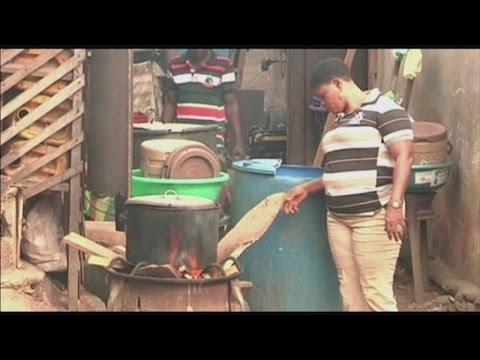 Nigéria, De la Bio-énergie à partir d'une start up