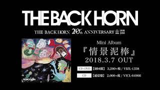 THE BACK HORN Major 1st Mini Album『情景泥棒』 2018年3月7日(水)発...