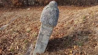 사직공(司直公)김약형 順天人