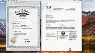 Línea en certificado paralegal