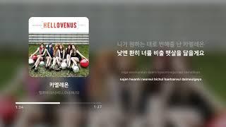 헬로비너스 (HELLOVENUS) - 카멜레온 (Cha…