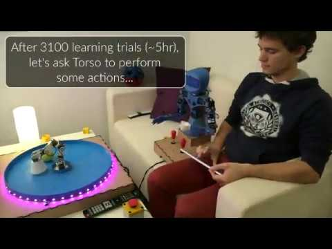 [extract] Intrinsically Motivated Multi-Task Reinforcement Learning