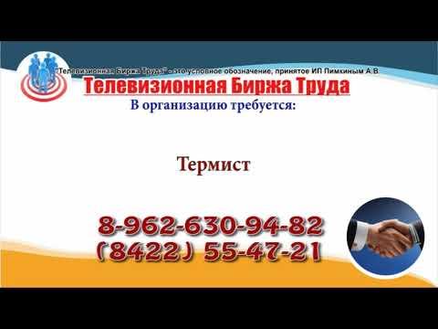 07 02 19 РАБОТА В УЛЬЯНОВСКЕ Телевизионная Биржа Труда 1