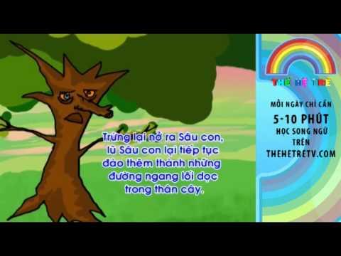 Câu Chuyện Chim Gõ Kiến và Cây Sồi - Vietnamese Children