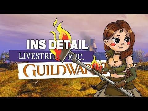 Guild Wars 2 & die schmutzigen Banditen ? F2P Anfänger Tutorials thumbnail