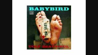 Watch Babybird Cfc video