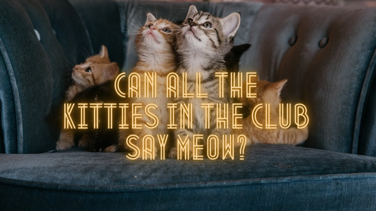 Can all the kitties in the club say meow (Original!)