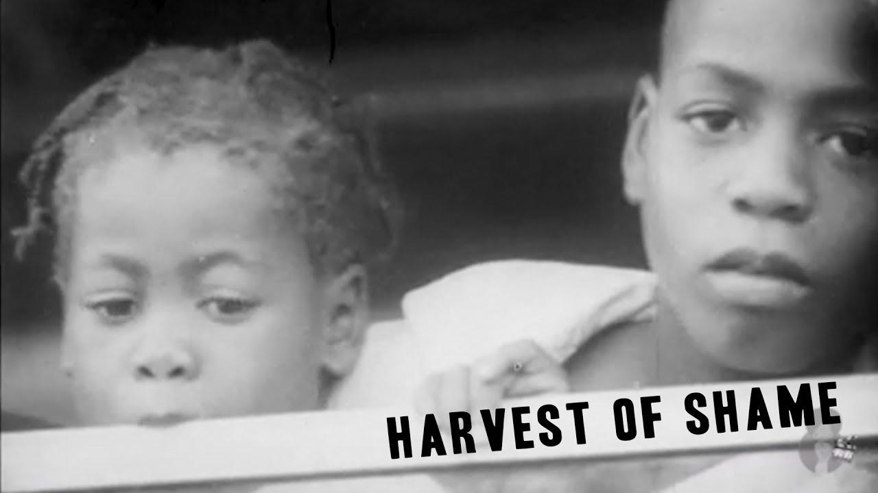 Harvest Of Shame (1960)