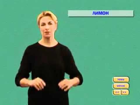 Видеословарь русского жестового