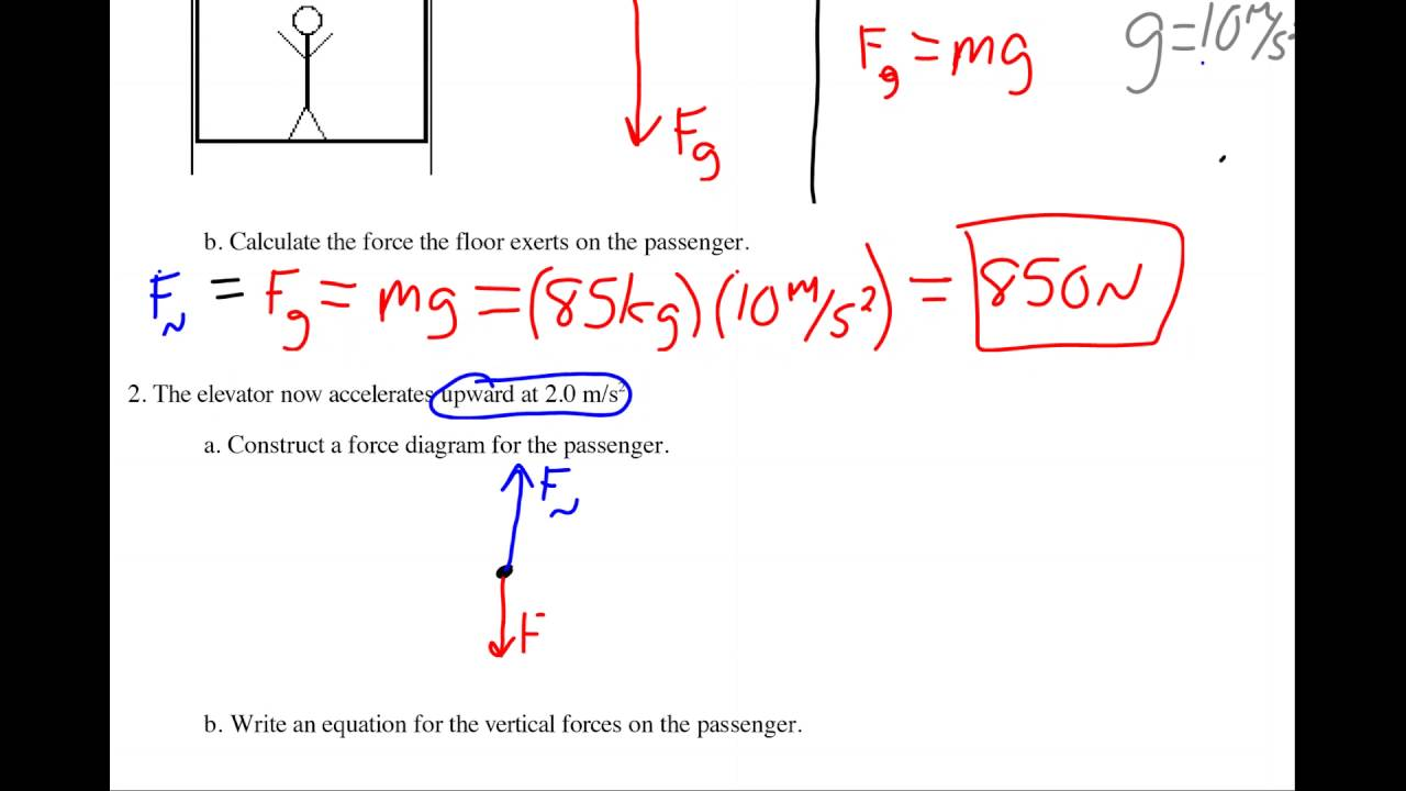 Forces worksheet 1 answers