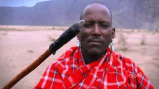 في الحلقة الثانية من #أيام_أفريقية : المساي قبائل الشجاعة والمحبة والسلام