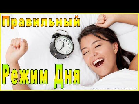 Промышленное и гражданское строительство, ИСФ СПбГПУ