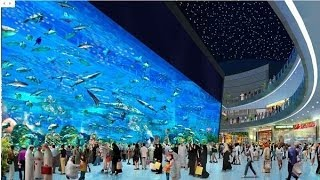 Аквариум в Дубай Молл /   Aquarium in Dubai Mall(, 2014-01-18T15:56:57.000Z)
