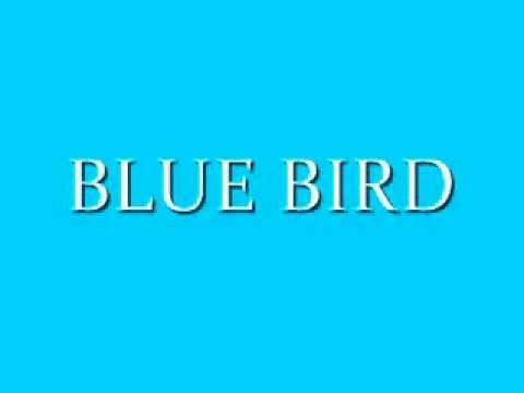ayumi hamasaki - BLUE BIRDcover