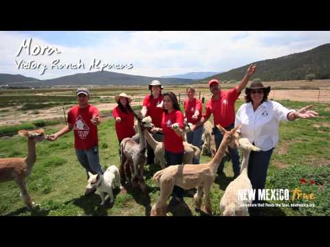 """""""New Mexico True"""" Statewide Sing-a-Long to """"Feels Like Home"""""""