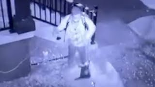 CAUGHT ON CAMERA: Watch as a grinch steals Xmas decorations!