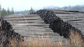 Public Adjusters Help Trinity River Lumber Co. Recover From Major Fire