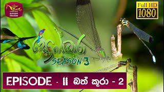 Sobadhara - Sri Lanka Wildlife Documentary | 2019-05-24 | Dragon Fly Part 02 Thumbnail
