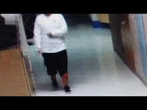 WATCH: Suspect sought in connection with burglary at Galliano Elementary School