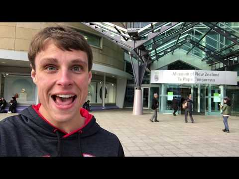 Kiwi Ambassador- Handy Tips for exploring Wellington City, NZ