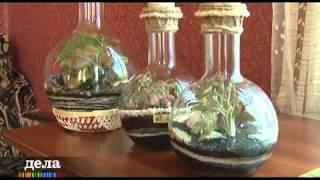 CTC Prima programma DELA(Изготовления флорариумов. Группа в Контакте: http://vk.com/flora24., 2012-07-23T23:21:52.000Z)