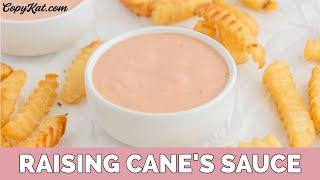 Raising Canes Dipping Sauce