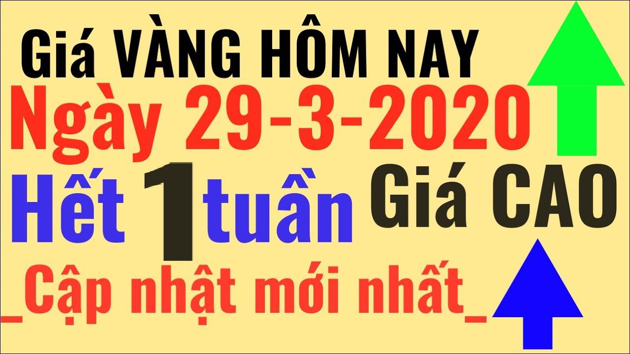 Giá VÀNG Hôm Nay 29/3 Hết 1 Tuần giá CAO, Bảo Tín Minh Châu SJC 24k Ý Mi Hồng 9999 online trực tuyến