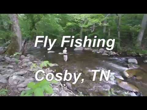 Fly Fishing, Cosby 2016