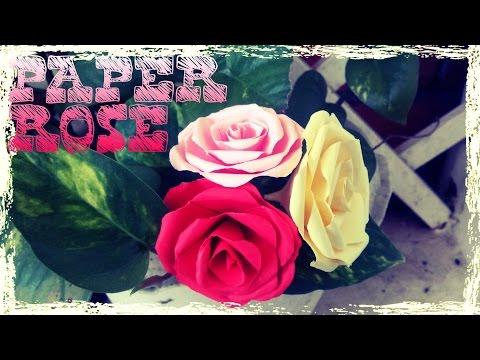 DIY - Cách làm hoa hồng bằng giấy đơn giản