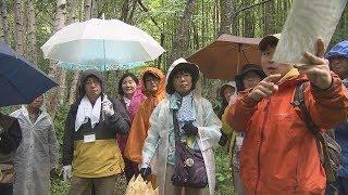 【HTBニュース】クマに遭遇しないためのクマの痕跡巡るツアー開催