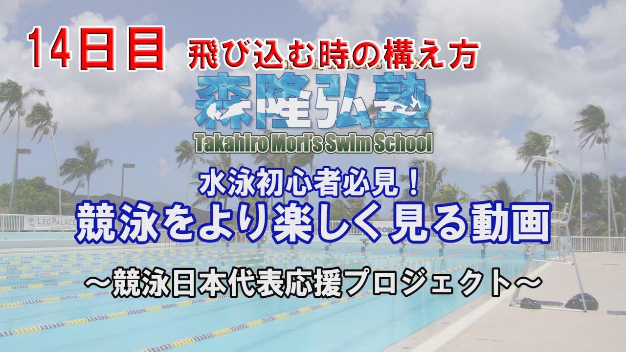 【水泳教室】飛び込む時の構え方|競泳をより楽しく見る動画14日目|競泳日本代表応援プロジェクト