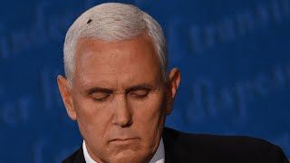 video: Internet abuzz as rogue fly lands on Mike Pence's head during vice-presidential debate