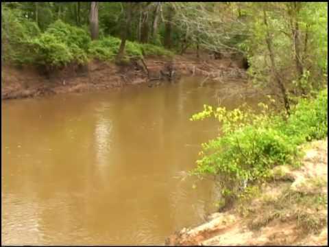 Wild & Scenic River Designation Opposed
