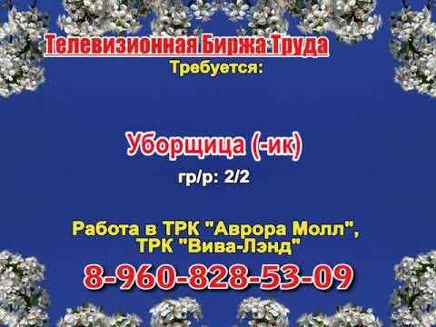 Телевизионная биржа труда. Эфир передачи от 27.05.2019